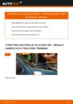 Mekanikerens anbefalinger om bytte av RENAULT Renault Kangoo kc01 1.4 Vindusviskere