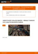 PDF manual sobre manutenção de KANGOO