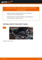 Automechanikų rekomendacijos RENAULT RENAULT MEGANE II Saloon (LM0/1_) 1.9 dCi Alyvos filtras keitimui