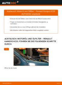 Wie der Wechsel durchführt wird: Ölfilter D 65 1.9 Renault Kangoo kc01 tauschen