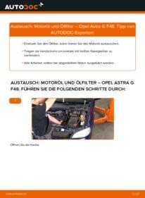 Wie der Wechsel durchführt wird: Ölfilter 1.6 16V (F08, F48) Opel Astra G CC tauschen