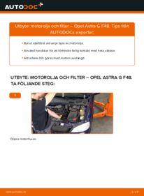 Så byter du Oljefilter på 1.6 16V (F08, F48) Opel Astra g f48