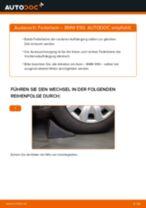 Stoßdämpfer hinten und vorne BMW 3 Limousine (E90) 2004 | PDF Anleitung zum Wechsel