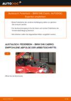 Nissan Primera p12 Kombi Blinker Lampe: Online-Handbuch zum Selbstwechsel
