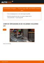 Hoe Bougies veranderen en installeren: gratis pdf handleiding