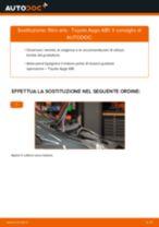 Le raccomandazioni dei meccanici delle auto sulla sostituzione di Tergicristalli TOYOTA Toyota Aygo AB10 1.4 HDi