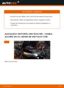 Wie der Wechsel durchführt wird: Ölfilter 2.0 i (CU1) Honda Accord VIII CU tauschen
