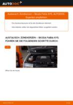 Jaguar XK Cabrio Koppelstange wechseln vorne links Anleitung pdf