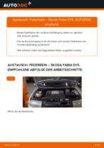 SKODA FABIA Combi (6Y5) Einspritzventil wechseln: Handbuch online kostenlos