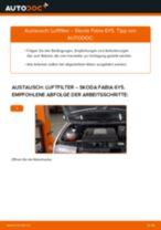 Wie Skoda Fabia 6Y5 Luftfilter wechseln - Anleitung