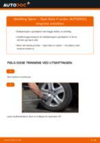Slik bytter du fjærer bak på en Opel Astra H sedan – veiledning