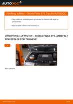 Slik bytter du luftfilter på en Skoda Fabia 6Y5 – veiledning