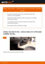 Tiešsaistes bezmaksas instrukcijas kā mainīties Salona filtrs SKODA FABIA Combi (6Y5)