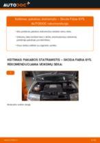 Internetinis vadovas, kaip pačiam pakeisti Variklio oro filtras ant Toyota Carina T19 Sedanas