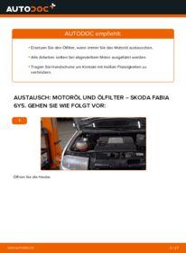 Wie der Wechsel durchführt wird: Ölfilter 1.4 16V Skoda Fabia 6Y5 tauschen