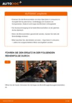 Ford Transit mk7 Bus Scheinwerferlampe: Online-Handbuch zum Selbstwechsel