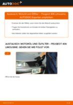 PEUGEOT 407 Anleitung zur Fehlerbehebung
