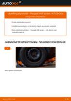 Montering Xenonlys PEUGEOT 406 (8B) - steg-for-steg manualer