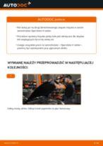 Poradnik online na temat tego, jak wymienić Sprężyna w VW Load Up