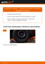 Millal vahetada Roolivardapea PEUGEOT 406 (8B): käsiraamat pdf