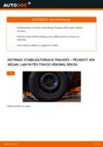 Automechanikų rekomendacijos PEUGEOT Peugeot 406 Sedanas 1.8 16V Alyvos filtras keitimui