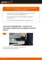 Schritt-für-Schritt-PDF-Tutorial zum Bremssattel-Austausch beim Seat Altea 5p1