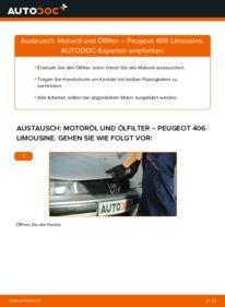 Wie der Wechsel durchführt wird: Ölfilter 2.0 HDI 110 Peugeot 406 Limousine tauschen