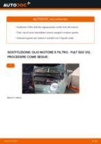Manuale di risoluzione dei problemi FIAT 500