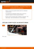 Guia passo-a-passo do reparo do FIAT DOBLO Box Body / Estate (263)