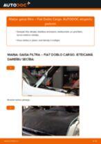 RIDEX 8A0424 par Doblo Cargo (223_) | PDF nomaiņas instrukcijas
