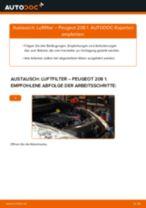 Tipps von Automechanikern zum Wechsel von PEUGEOT Peugeot 208 1 1.2 Scheibenwischer