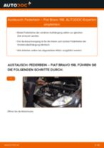 Schritt-für-Schritt-PDF-Tutorial zum Getriebelagerung-Austausch beim Fiat 500 312
