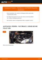Wie Fiat Bravo 2 Federn vorne wechseln - Anleitung
