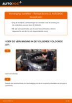 Aanbevelingen van de automonteur voor het vervangen van RENAULT Renault Scenic 2 1.5 dCi Interieurfilter