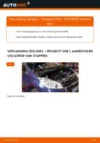 Onderhoud PEUGEOT tutorial pdf