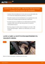 Sustitución de Muelle a gas anaquel maletero en Peugeot 308 SW Familiar - consejos y trucos