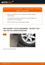 Auto mechanic's recommendations on replacing PEUGEOT Peugeot 208 Mk1 1.2 Springs