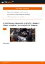Mekanikerens anbefalinger om bytte av RENAULT Renault Scenic 2 1.5 dCi Kupefilter