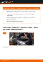 Mekanikerens anbefalinger om bytte av RENAULT Renault Scenic 2 1.5 dCi Drivstoffilter
