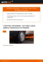 Montering Glødelampe Nummerskiltlys FIAT DOBLO Cargo (223) - steg-for-steg manualer