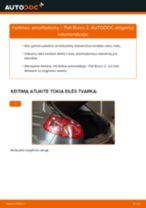 Sužinokite kaip išspręsti FIAT gale Amortizatorius problemas