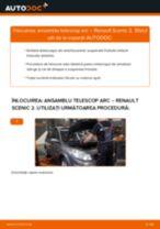 Tutorialul etapizat în format PDF pentru substituir Amortizor la RENAULT SCÉNIC II (JM0/1_)