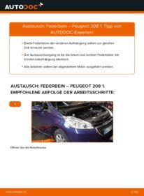 Wie der Wechsel durchführt wird: Stoßdämpfer 1.4 HDi Peugeot 208 1 tauschen