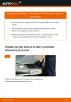 Wie Radlagersatz PEUGEOT 406 austauschen und anpassen: PDF-Anweisung