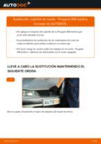 Cómo cambiar y ajustar Rodamiento de rueda PEUGEOT 406: tutorial pdf