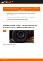 Manuál pro kutily o výměně Zapalovaci civka v PEUGEOT 307 2012