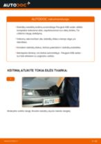 Kaip pakeisti Peugeot 406 sedan stabdžių diskų: galas - keitimo instrukcija