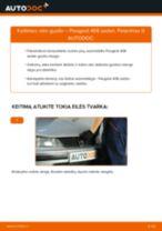 Kaip pakeisti Peugeot 406 sedan rato guolio: priekis - keitimo instrukcija
