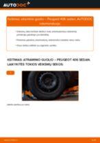 Kaip pakeisti Peugeot 406 sedan atraminio guolio: priekis - keitimo instrukcija