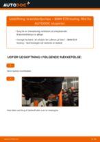 Brændstofsystem udskifter og reparationsmanual med illustrationer